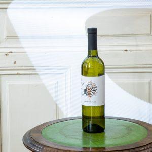 sauvignon blanc vino